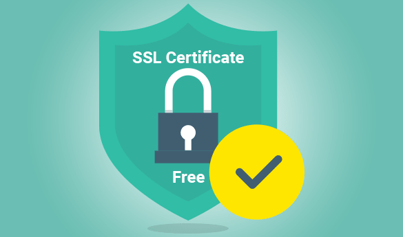 Which type of SSL certificate do you need?