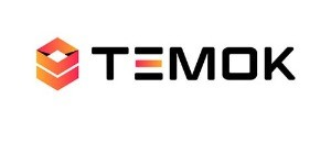 Temok IT Services Hosting