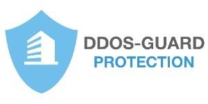 DDoS-GUARD Hosting